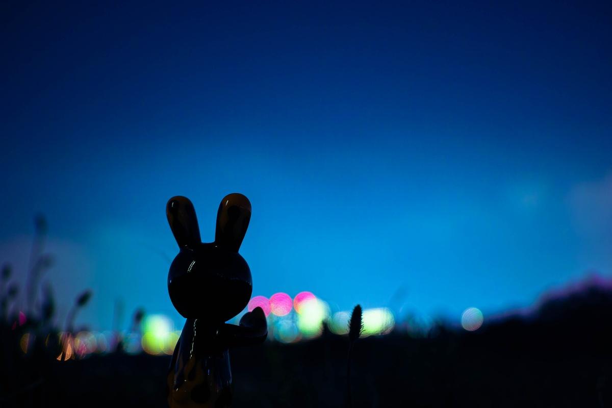 rabbit (1 - 1)-2